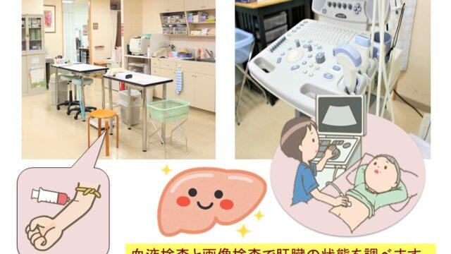 血液検査と腹部超音波検査|いしい内科・糖尿病クリニック